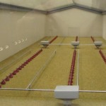 Poultry House Scale Model