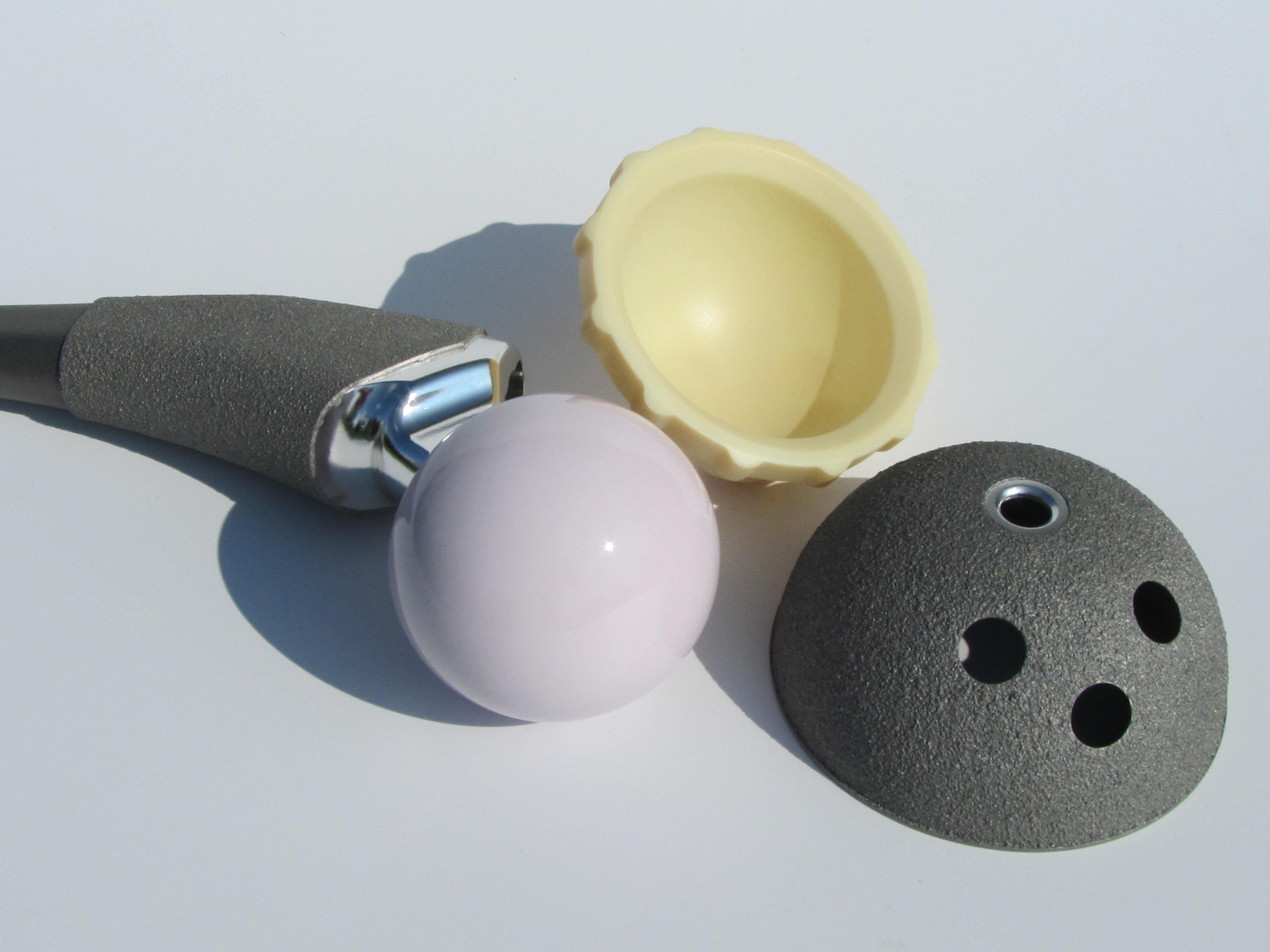 hip implant model