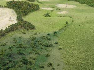 historical site model